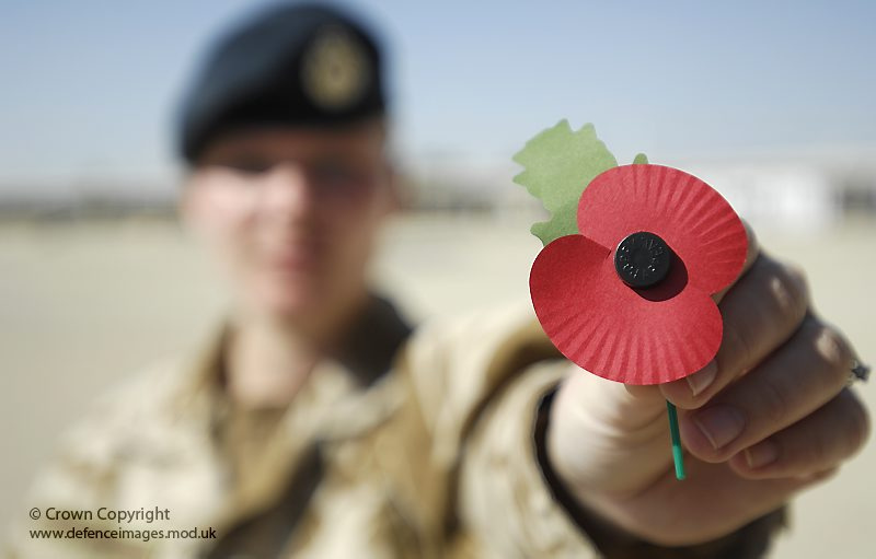 Soldier With Poppy