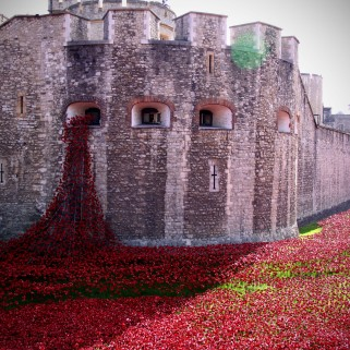 Tower of London (by Samantha Beddoes)