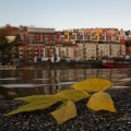 11 Geraint Rowland – Down by the River, Beautiful Bristol
