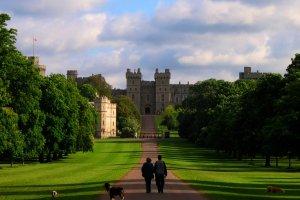 JR P -- A Saturday Morning Walk in Windsor Great Park