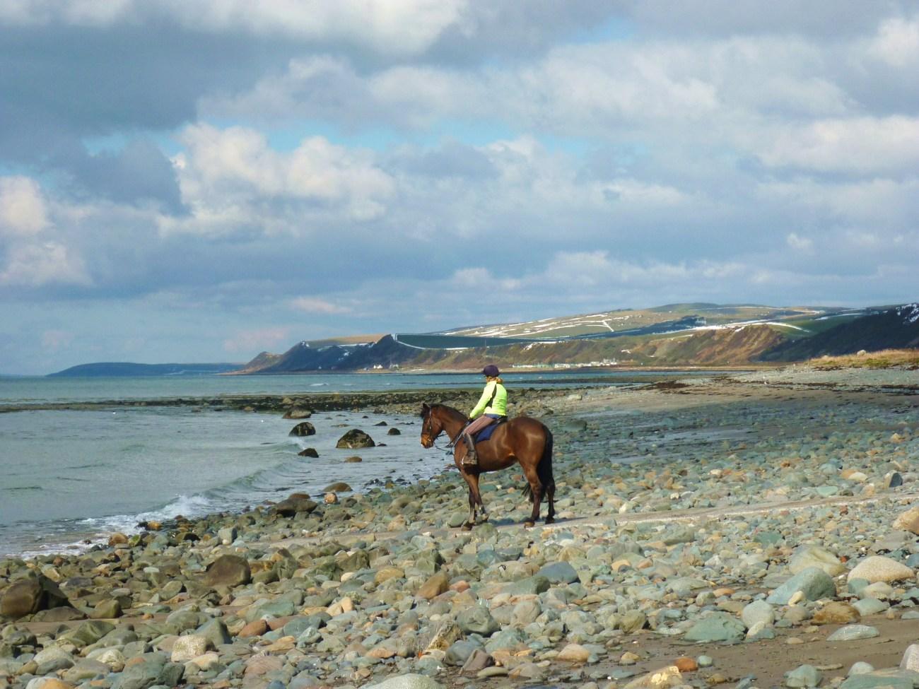 Escocia a caballo