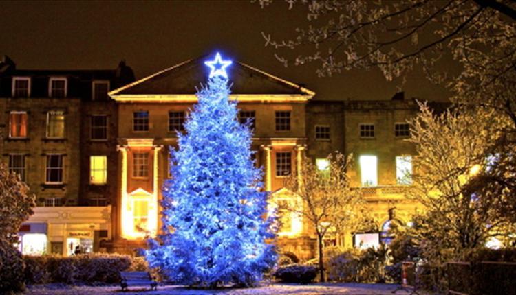 Árbol de Navidad en Clifton