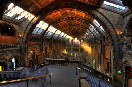 Umberto Rotundo -- Natural History Museum of London