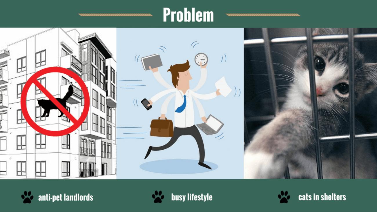 you&meow-anti-pet-landlords