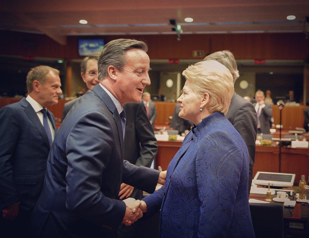 David Cameron y Dalia Grybauskaitė durante las negociaciones
