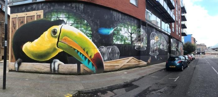 Graffiti pájaros Glasgow