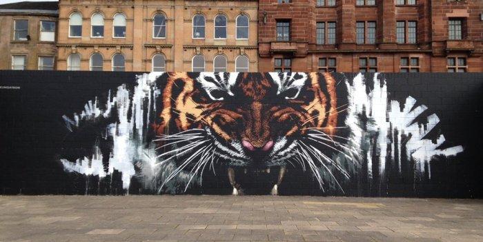 Graffiti tigre en Glasgow