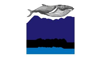 Ocean Film Festival 2016