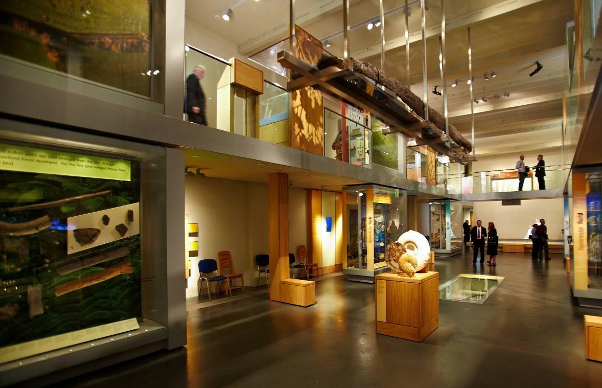 El Museo de Somerset