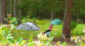 The Lazy Duck, camping en Escocia