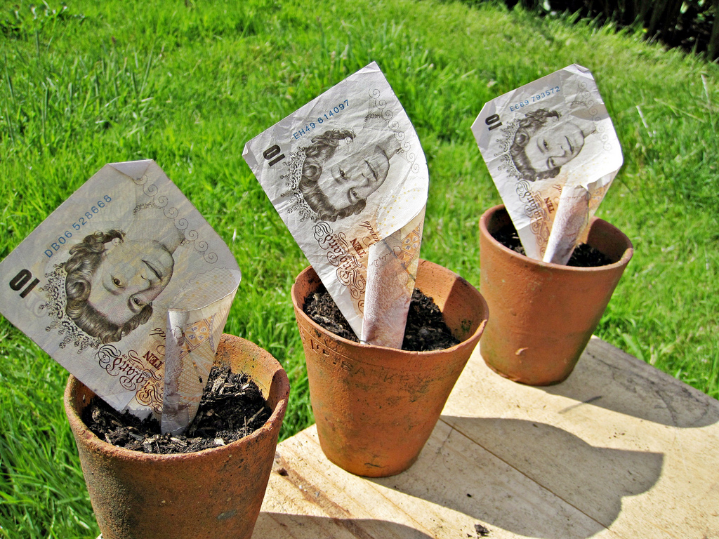 £10 note in garden