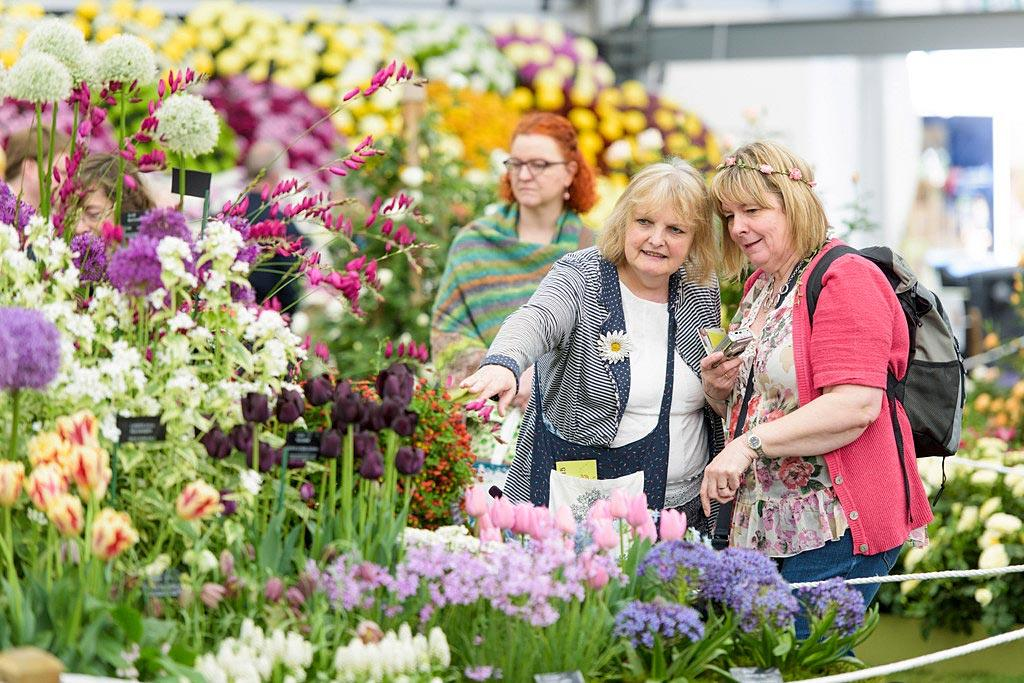 RHS Flower Show, en Derbyshire