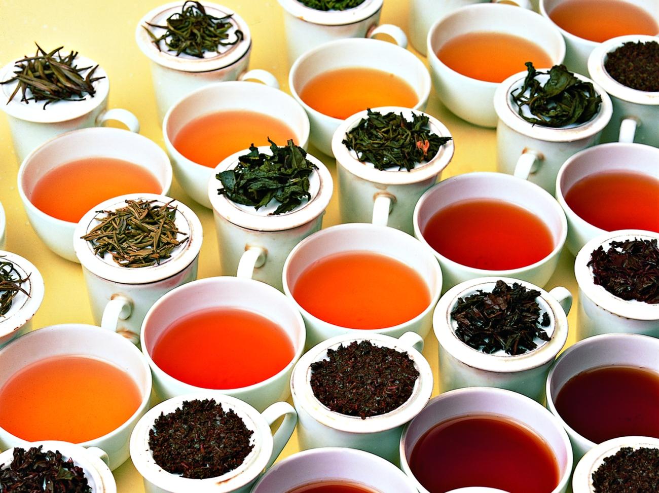 tea tasting bristol