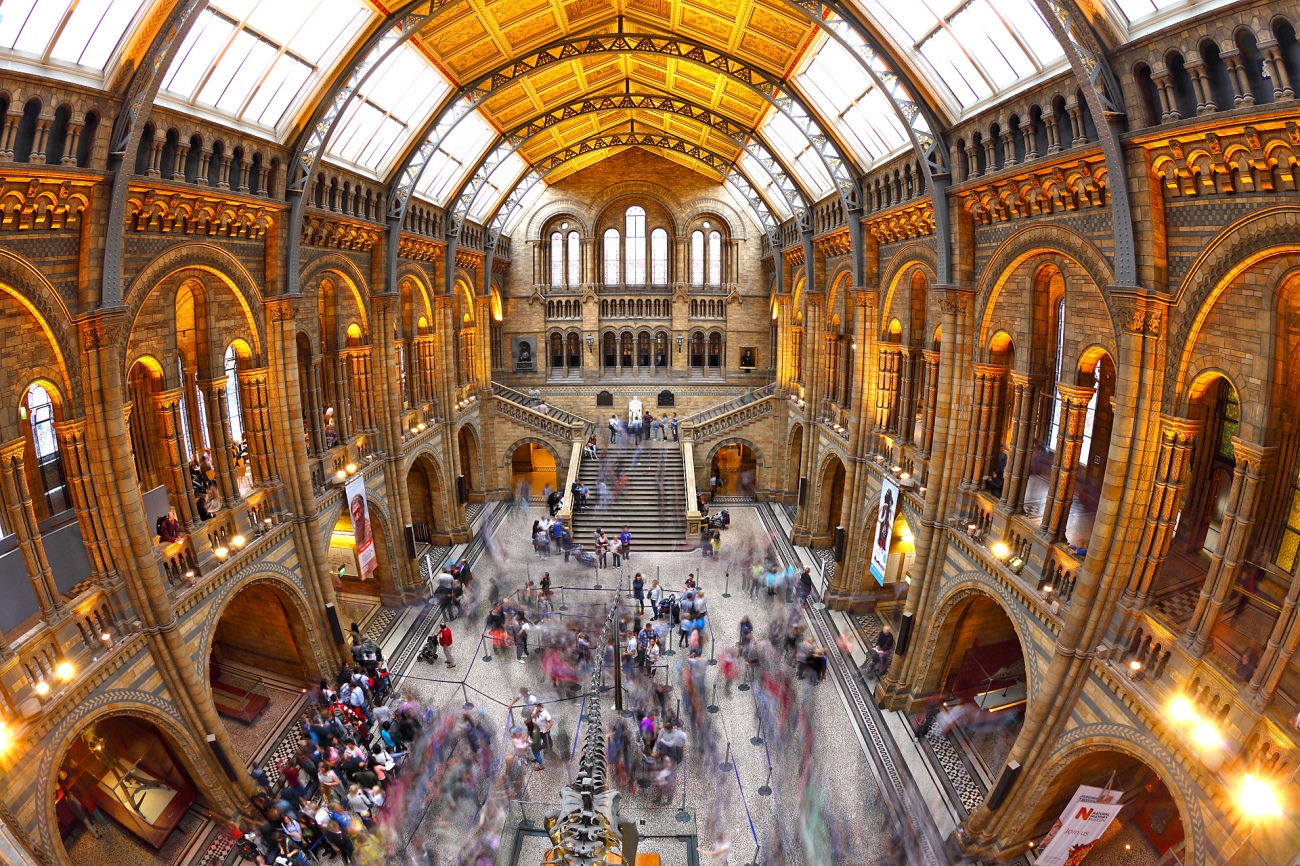 natural history museum - Marc Biarnès