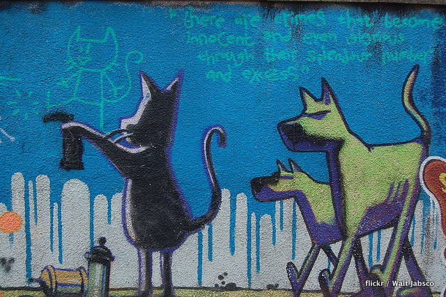Cat and Dogs - Robertson Rd, Easton