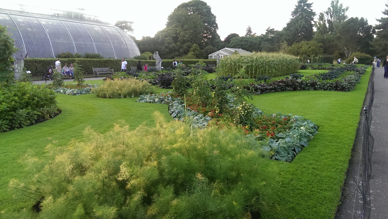 Russell Bowes -- Kew Gardens, vegetable gardens